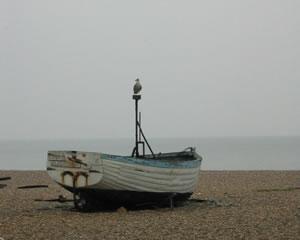 Orford coast